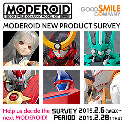 MODEROID NEW PRODUCT SURVEY
